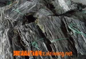 干海带的功效与作用 吃干海带的好处